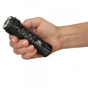 ZAP Stun Gun Light Mini 800 000 Volts With Flashlight